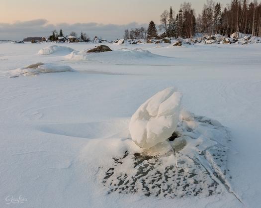 Isblomma, naturen är häftig