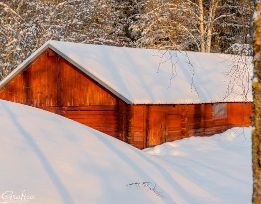 Uthus med snö